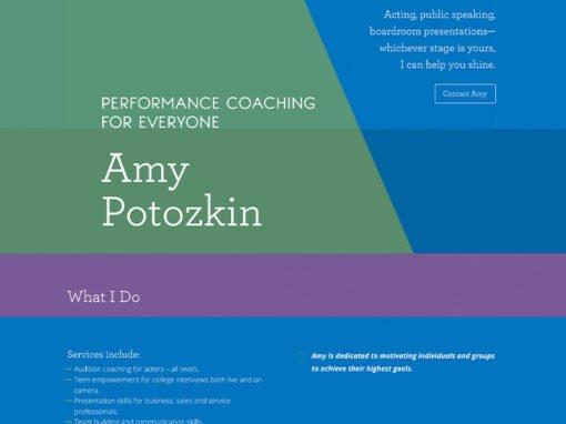 Amy Potozkin